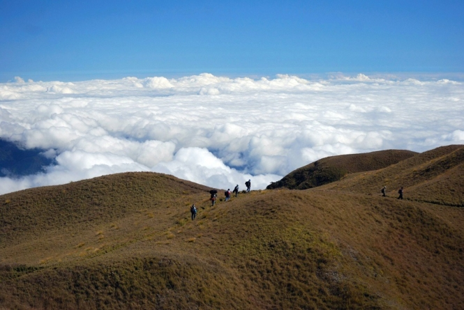 Sea of clouds in Mount Pulag