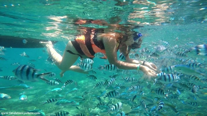 Snorkeling in Perhentian Islands, Malaysia