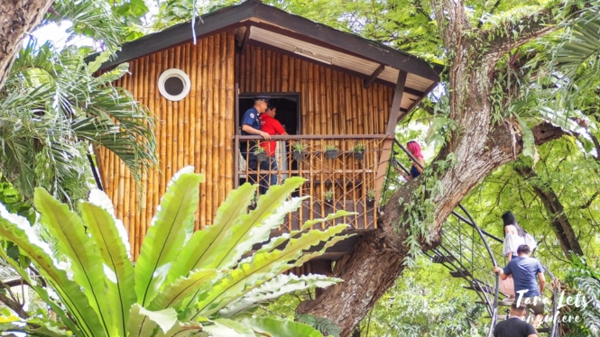 Tree House in Panansonca Park