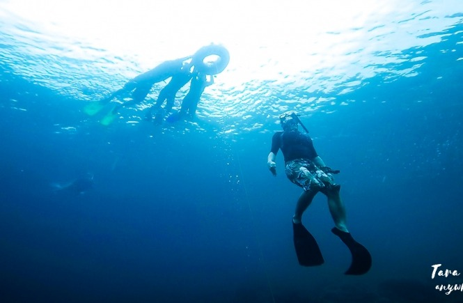 Basic freediving lesson in Batangas