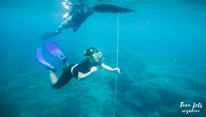 Down the line - basic freediving lesson