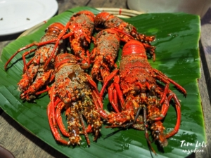 Lobsters in Palanan, Isabela