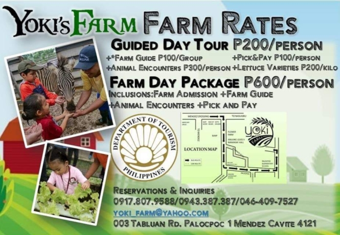 Yoki's Farm tour packages