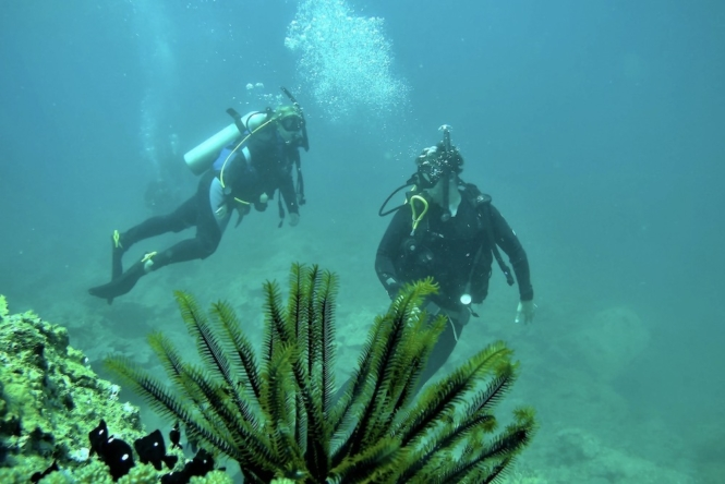 Best dive spots in Southeat Asia - Nha Trang, Vietnam