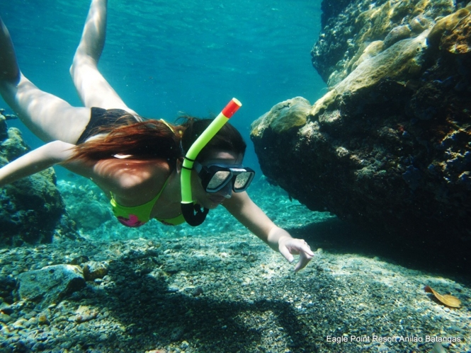 Eagle Point Resort - snorkeling
