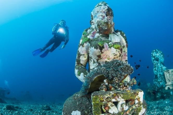 10+ BEST Dive Spots in Southeast Asia