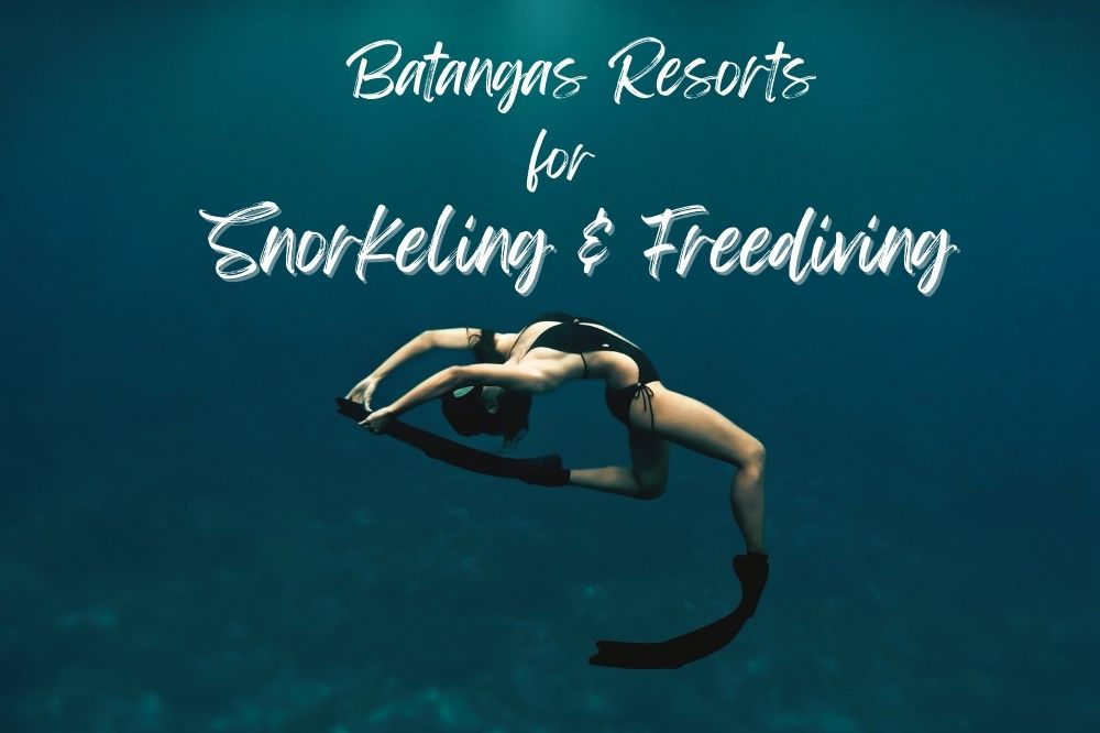 Batangas resorts for snorkeling and freediving